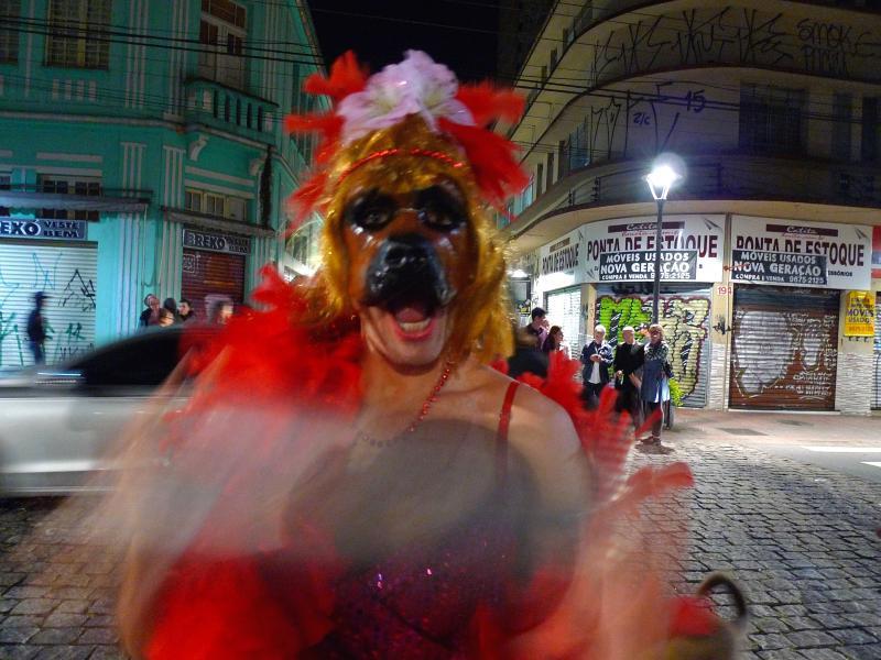 Brandon LaBelle/Octavio Camargo, Night of Animal Dreams, 2016