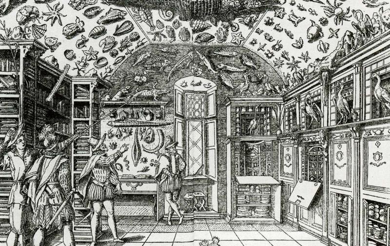 Ferrante Imperato. Dell'Historia Naturale. Grabado. 1599