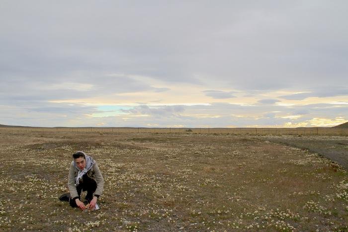 Alejandra Pérez Un elemento en común alfa Antartida