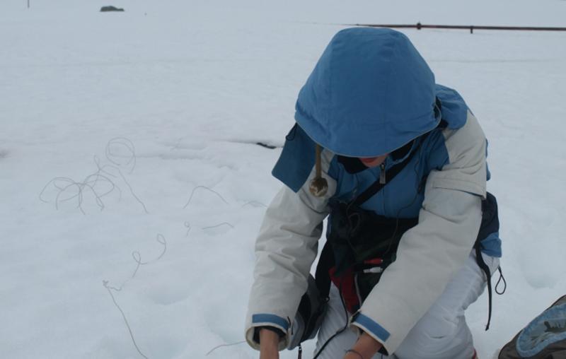 La artista Alejandra Pérez en la Antártida
