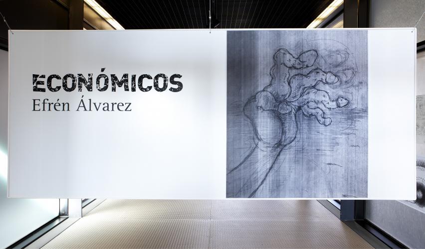 Exhibition view. Efrén Álvarez. Económicos, 2011