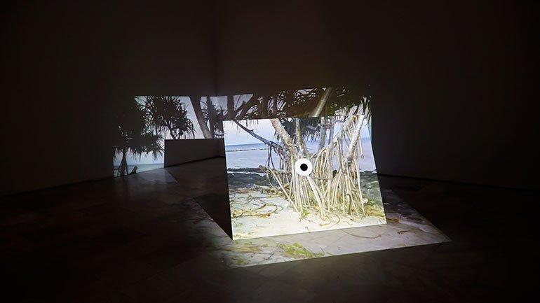 Vista de sala de la exposición Alexandre Estrela. Cápsulas de silencio, 2015