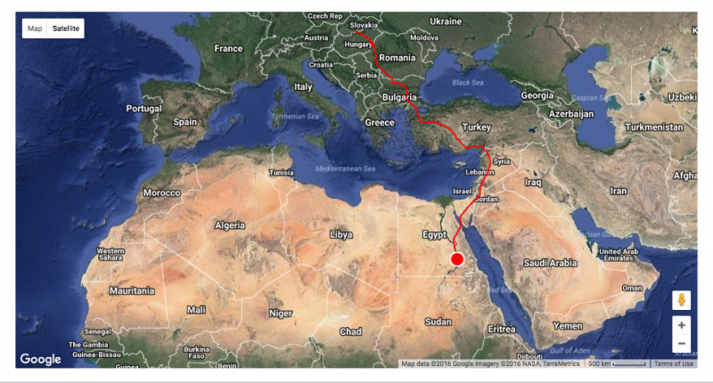 Migratory path of the storks